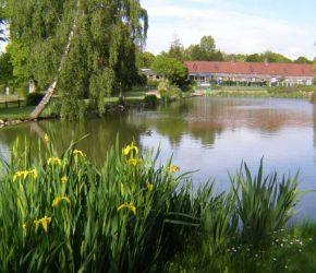 L'étang de pêche dans le camping l'Etang des Haizes à La Haye du Puits