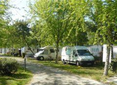 Emplacements de camping dans le camping Foret Lahitte