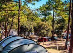Un emplacement de camping dans le camping Côte d'Argent à Hourtin