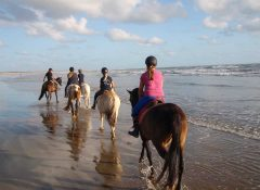 Balade en cheval sur la plage à Airotel Oléron