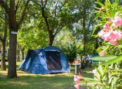 L'emplacement pour tente dans le camping Parc Bellevue à Cannes