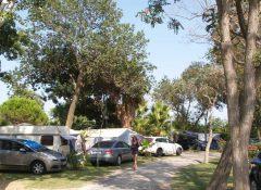 Les emplacements de camping arborés au camping Le Soleil à Argeles sur Mer